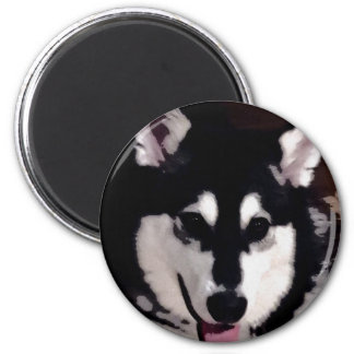 Black and white smiling Alaskan Malamute 2 Inch Round Magnet