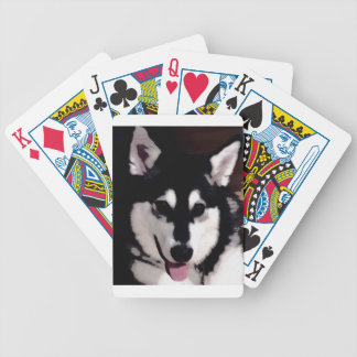 Black and white smiling Alaskan Malamute Bicycle Playing Cards