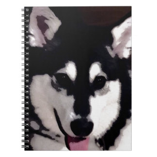 Black and white smiling Alaskan Malamute Notebooks