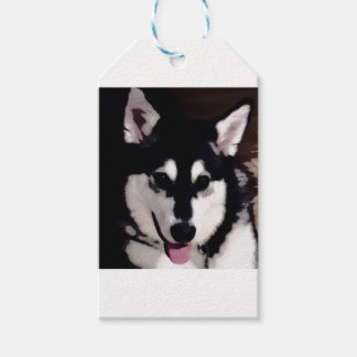 Black and white smiling Alaskan Malamute Pack Of Gift Tags