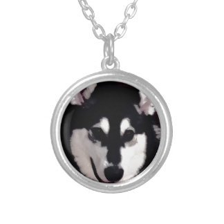 Black and white smiling Alaskan Malamute Silver Plated Necklace