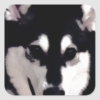 Black and white smiling Alaskan Malamute Square Sticker