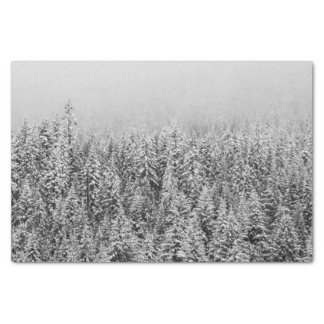 Black and White Snowy trees Tissue Paper