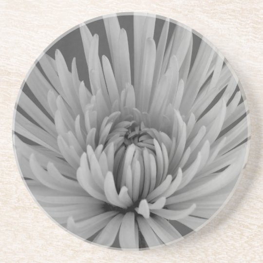 Black and White Spider Mum Beverage Coaster