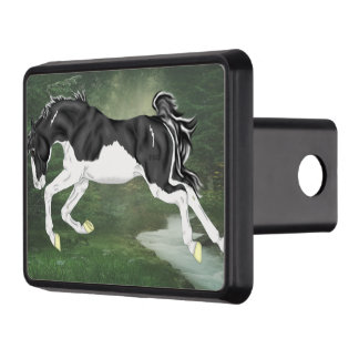 Black and White Splash Overo Paint Horse Trailer Hitch Cover
