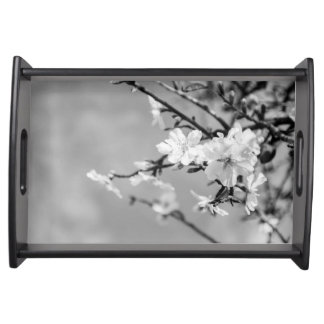 Black and White Spring Cherry trees Serving Tray