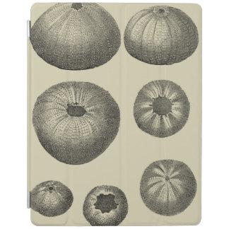 Black and White Starfish iPad Cover