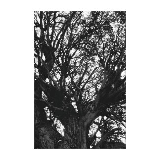 Black and white summer canvas print
