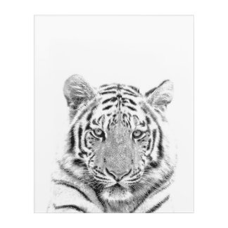 Black and White Tiger Acrylic Wall Art