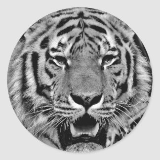 Black and White Tiger Face Classic Round Sticker