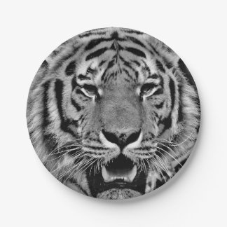 Black and White Tiger Face Paper Plate