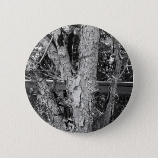 Black and White Tree Nature Photo 2 Inch Round Button