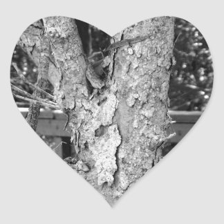 Black and White Tree Nature Photo Heart Sticker