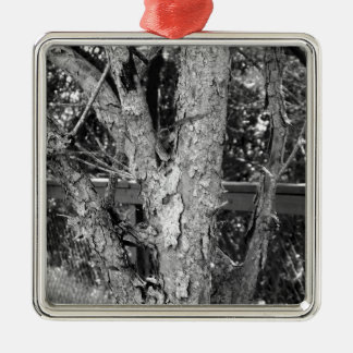 Black and White Tree Nature Photo Metal Ornament