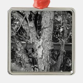 Black and White Tree Nature Photo Metal Ornament
