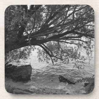 Black and White Tree Silhouette Drink Coaster