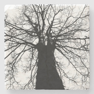 Black and White Tree Silhouette Stone Coaster