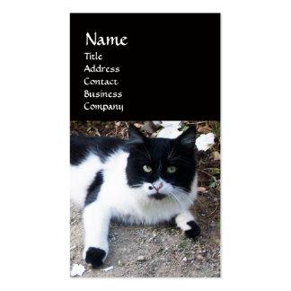 BLACK AND WHITE TURKISH CAT PIERO BUSINESS CARD
