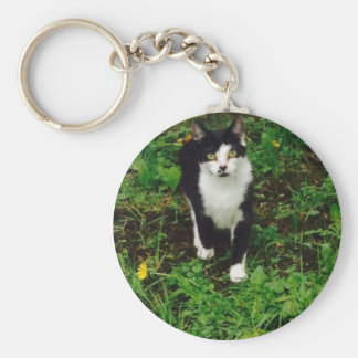 Black and white tuxedo cat in the green grass keychain