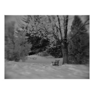 Black and White Winter Park Bench Print