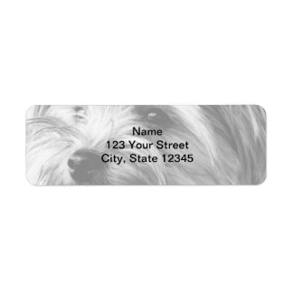 Black and White Yorkshire Terrier Return Address