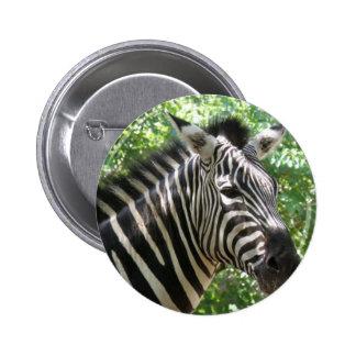 Black and White Zebra Button