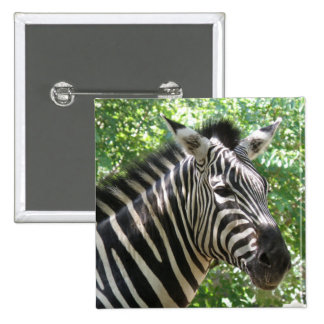Black and White Zebra Pin
