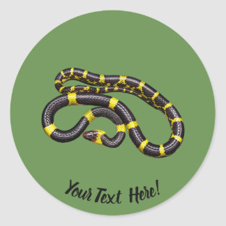 Black and yellow snake classic round sticker