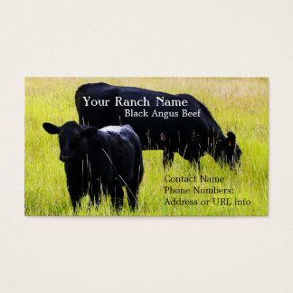 Black Angus Cattle Grazing in Field Business Card