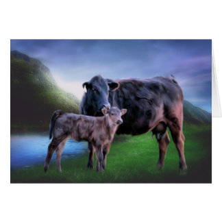 Black Angus Cow and Calf Card