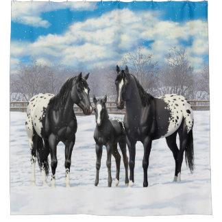 Black Appaloosa Horses In Snow