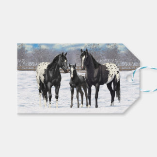 Black Appaloosa Horses In Snow Pack Of Gift Tags
