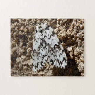 Black Arches Moth Photo Puzzle with Gift Box