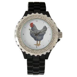 Black Barred Plymouth Rock Hen Watch
