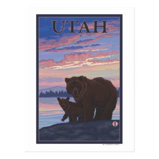Black Bear and CubUtah Postcard
