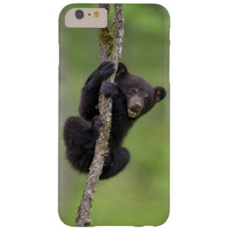 Black bear cub playing, Tennessee Barely There iPhone 6 Plus Case