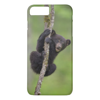 Black bear cub playing, Tennessee iPhone 7 Plus Case