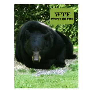 "Black Bear - ""Cubby WTF - Where's the Food"" Postcard"