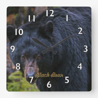 Black Bear Dignity Square Wall Clock