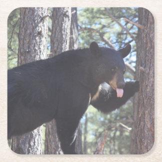 Black Bear Drink Coaster