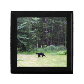 Black Bear Gift Box