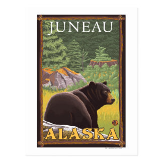 Black Bear in Forest - Juneau, Alaska Postcard
