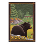 Black Bear in Forest - Montana Posters