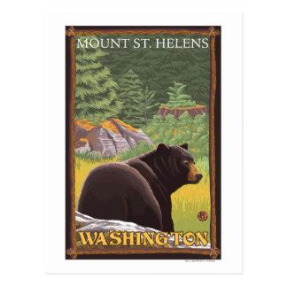 Black Bear in Forest - Mount St. Helens, WA Postcard