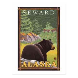 Black Bear in Forest - Seward, Alaska Postcard