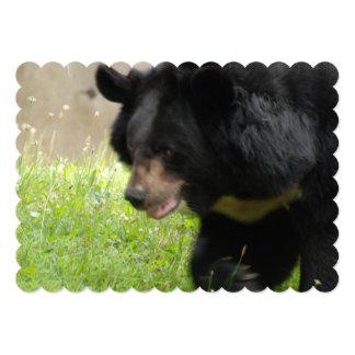 Black Bear Personalized Invite