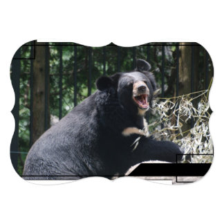 Black Bear Custom Invitations