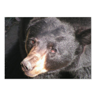 Black Bear Invitation