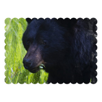 Black Bear 5x7 Paper Invitation Card