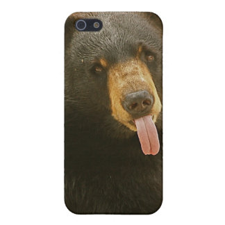 Black Bear iPhone 5/5S Covers